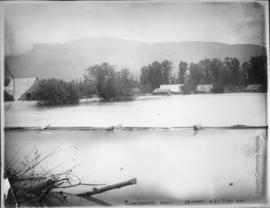 Cunningham's Ranch Dewdney B.C. Flood 1894