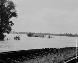 Mr. Irwin's farm, Dewdney. After Dewdney Pumps went out June 3rd, 1948