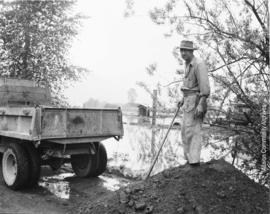 Man shovelling dirt to protect property from flood waters of the Fraser River