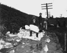 Half a mile west of Dewdney Pumps. Crews of sandbaggers rush to fill a weak spot beneath the doub...