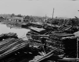 Bran sticks on street behind Cannery Mission City, June 20th, 1948